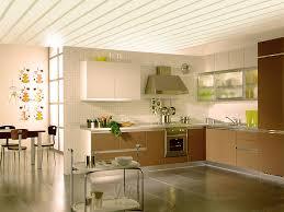 4x8 Plastic Ceiling Panels by About Decorative Ceiling Panels Best House Design