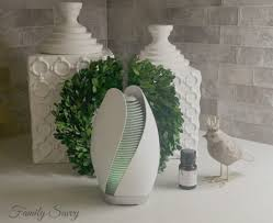 Lampe Berger Easy Scent Instructions by How To Make Your House Smell Fresh U0026 Fab All The Thyme Family Savvy