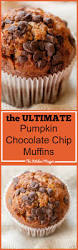 Panera Pumpkin Muffin Nutrition by The Ultimate Chocolate Chip Pumpkin Muffins The Kitchen Magpie