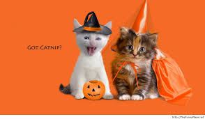 Spirit Halloween Wichita Ks by Halloween Cats Wallpaper Halloween Cats 5139139 Vintage