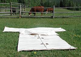 Cowboy Bed Roll by Mirror Kb Ranch Blog A Diary By The Twin Wranglers Of Their Life