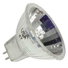 january 2013 bulb for sale