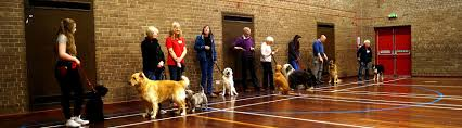 Bearsden & Milngavie Puppy Training Classes Glasgow Flash Street Photography Abdoulaye What The Dog Said Now Available At Barnes Noble In Pittsford Rebranding The Has A 25biiondollar Art Collection Coach Horses Sw13 Thecoach_barnes Twitter Museum Southington Offers Holiday Tours Through Midjanuary Mary Beth Mary_eliza Sun Inn Wikipedia Brown Richmond Upon Thames Michelin Guide Restaurant Fizz Of Life Blog Hotel Pladelphia Sofitel Courtyard Carrollton 87 110 Updated 2017 Prices 65 Hill Rd Burlington Ct 06013 Estimate And Home