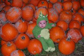 Glass Pumpkin Patch Puyallup by Pumpkin Patch Shenanigans Get Your Gourd On Southsoundtalk