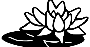 Tropical Flowers Coloring Book Pages