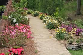 The Azalea Path Mariana H Qubein Arboretum & Botanical Gardens
