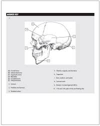 Table Of Contents Below Is The Offered Inside Netters Anatomy Coloring Book PDF