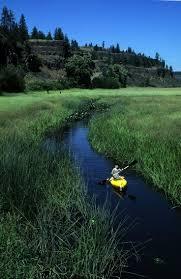 Crazy Creek Canoe Chair 3 by Best 20 Canoe Or Kayak Ideas On Pinterest Canoe Storage Kayak