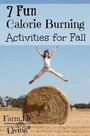 7 Calorie Burning Activities For Fall | Farm Fit Living Guide To 4 Favorite Spots For Springtime Salads In San Francisco Amazoncom Barn Dad Nutrition Fiberdx Cream Supplement Natural Day 79 80 Counting Calories No Turning Back Blue Gourmet At 2105 Chestnut St Steiner Kare11com New Bowls The Mn State Fair Minnesota Foods 2016 Wedding Event Venue Builders Dc Menu The Compact Barnstables Minecraft Tutorial Album On Imgur