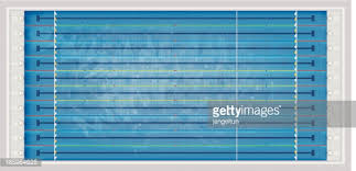 Olympic Swimming Pool Top View Vector Art
