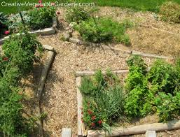 Creative Ve able Gardener Why mulch is the ultimate garden tool
