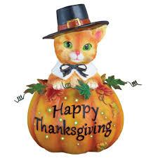Fiber Optic Pumpkin Decorations by Amazon Com Fiber Optic Pilgrim Cat Thanksgiving Decoration Home