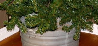 Balsam Christmas Tree Care by How To Get A 5 Christmas Tree And How To Take Care Of It