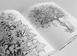 Johanna Basford Adult Coloring Page Inspired By Nature