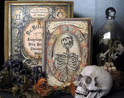 Halloween Books For Adults 2017 by Best 25 Printable Halloween Book Covers Ideas On Pinterest