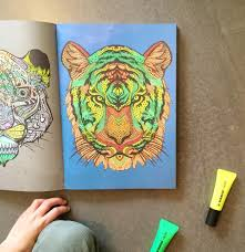 I Recently Picked Up This Really Cool Colouring Book The Art Therapy For My Kids And Its Been A Huge Hit It Mostly Consists Of Very