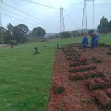 100 Fresh Home And Garden Instant Lawn Service Waterkloof Pretoria