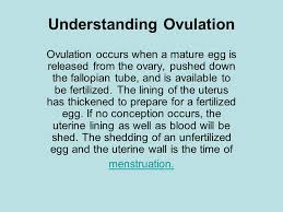 Shedding Of The Uterine Lining Is Called by Understanding Ovulation Ppt Download