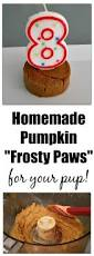 Old Westbury Gardens Dog Halloween by 620 Best Images About Dog Stuff On Pinterest Frozen Dog Treats