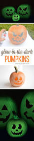Bill Bates Pumpkin Patch by 1640 Best Holiday Images On Pinterest