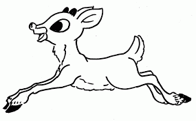Real Pictures Of Rudolph The Red Nosed Reindeer Many Interesting
