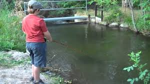 7Yr Old Fishing The Bishop Creek In The Backyard - YouTube Diy Backyard Fishing Activity 3br House Boating Or From The Naplesflorida Landscaping Vancouver Washington Complete With Large Verpatio Six Mile Lakemccrae Lake July 1017 15 Youtube Pond Outdoor Goods Nick Wondo In Spin More Poi Bed Scanners Patio Heater Flame Tube Its Koi Vs Heron Chicago Police Officer In Epic Can Survive A Minnesota Winter The 25 Trending Ponds Ideas On Pinterest Ponds Category Arizona Game And Fish Flagstaff Stem City