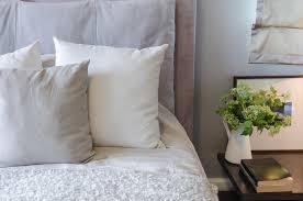 plante verte dans une chambre à coucher idée reçue il ne faut pas mettre de plante dans sa chambre