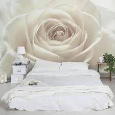 rosentapete fototapete pretty white blumen