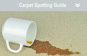 Empire Carpet And Flooring Care by Product Solutions Sss Triple S
