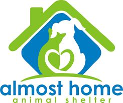 Pets for Adoption at Almost Home Animal Shelter in Pennsauken NJ