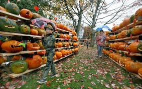 Pumpkin Festival 5k Milford Nh by Scaled Down Version Of Keene U0027s Pumpkin Festival A Hit With Many Sunday
