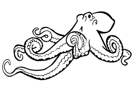 Find here more than 10k unique coloring pages that you can print out