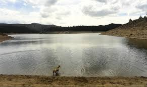 Jefferson County Co Christmas Tree Permits by Hickenlooper Backs 380 Million Denver Water Project To Divert