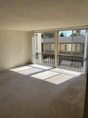 100 Creekside Apartments San Mateo C4ufex3va2yztm
