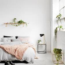 plante verte dans une chambre à coucher quelle plante avoir dans la chambre