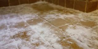 best way to remove black mold from tile and grout curious nut