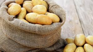 kartoffeln lagern 7 tipps zur richtigen aufbewahrung