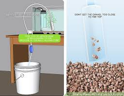 Cloudy Water From Sink by 3 Ways To Change The Water In A Fish Aquarium Wikihow