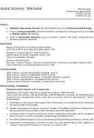 Profile On Resume Example Enchanting Examples High School With Additional Personal Sample For Student Template Stu