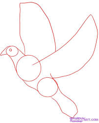 How To Draw A White Dove