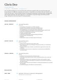 Account Executive - Resume Samples & Templates | VisualCV Executive Resume Samples Australia Format Rumes By The Advertising Account Executive Resume Samples Koranstickenco It Templates Visualcv Prime Financial Cfo Example Job Examples 20 Best Free Downloads Portfolio Examples Board Of Directors Example For Cporate Or Nonprofit Magnificent Hr Manager Sample India For Your Civil Eeering Technician Valid Healthcare Hr Download