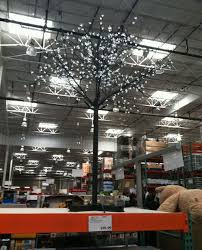 LED Christmas Project White Trees Beat Costco Price