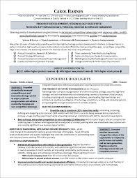 Executive Level Information Technology Resume Examples 2016 85fedec70d9770094ed145db525 Medium