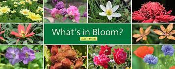 Mounts Botanical GardenMounts Botanical Garden of Palm Beach County