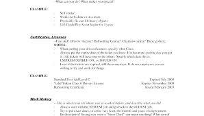 Stocker Job Description Store Clerk Unique Stock Of Sample Resume For Retail