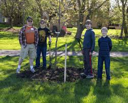 Arbor Day Event | Chanhassen, MN - Official Website Mail Order Natives Mailordernatives Instagram Account Pikstagram Tax Day 2019 All The Deals And Freebies To Cashin On April 15 Arbor Foundation Coupons Code Promo Discount Free National Forest Tree Care Planting Gift Mens Tshirt Ather Gray Coffee Whosale Usa Coupon Codes Online Amazoncom Vic Miogna Brina Palencia Matthew How Start Create Ultimate Urban Garden Flower Glossary Off Coupons Promo Discount Codes Wethriftcom 20 Koyah Godmother Gift Personalized For Godparent From Godchild Baptism Keepsake Tree Alibris Voucher Code Dna Testing Ancestry Suzi Author At Gurl Gone Green Page 13 Of 83