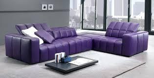 Alessia Leather Sofa Living Room by Beautiful Pink Leather Sofa Inspirational Tatsuyoru Com