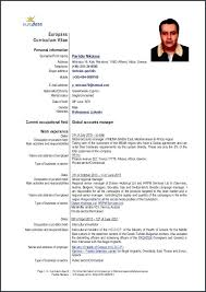 Curriculum Vitae Template From Example Cv English Doc