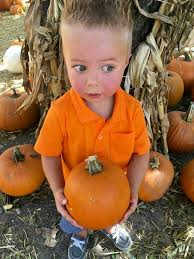 Pumpkin Farms In Bay County Michigan by Fall Fun At The Irvine Park Pumpkin Patch Oc Mom Blog