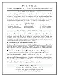 Business Development Resume Examples Manager Marketing